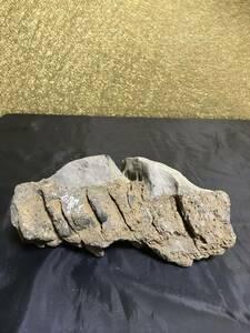 水石 盆石 珍品 鑑賞石 美石 飾り石 盆栽 天然石