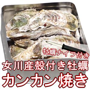 【カンカン焼き】殻付き牡蠣 Lサイズ 2kg(16個前後) 宮城県女川産 牡蠣ナイフ、軍手付き COL-OOK2_11