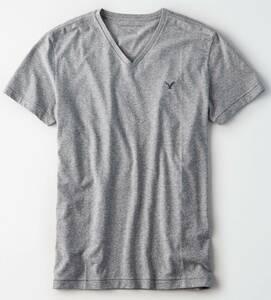 ラスト!!◇◆AE/アメリカンイーグル / AEロゴVネックスラブTシャツ / US M / M.H.Gray /