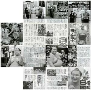 大相撲 切り抜き16ページ 朝乃山 照ノ富士 豊ノ島 白鵬 翔猿 若隆景