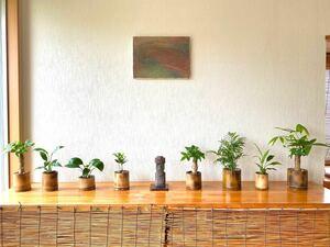 手作りハンドメイド 炙り竹鉢 観葉植物やお花の入れ物(真竹、孟宗竹) 送料込み