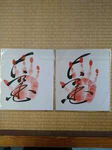 大相撲 第62代横綱 「大乃国」 手形 直筆サイン 6枚セット