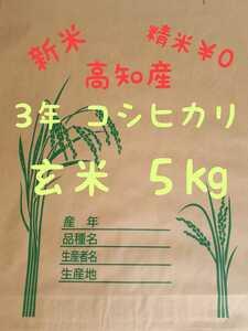 送料込み 令和3年産 高知県産 コシヒカリ玄米5㎏(袋込み)