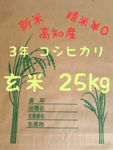 送料込み 令和3年産 高知県産 コシヒカリ玄米25㎏(袋込み)