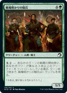 MTG 蝋燭明かりの騎兵 コモン マジック:ザ・ギャザリング イニストラード:真夜中の狩り MID-175   日本語版 クリーチャー 緑