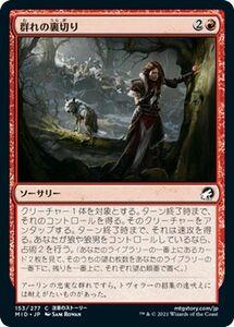 MTG 群れの裏切り コモン マジック:ザ・ギャザリング イニストラード:真夜中の狩り MID-153   日本語版 ソーサリー 赤