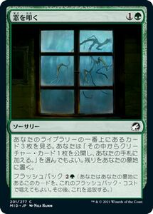 MTG 窓を叩く コモン マジック:ザ・ギャザリング イニストラード:真夜中の狩り MID-201   日本語版 ソーサリー 緑