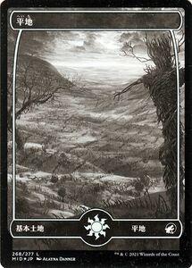 MTG 平地 フォイル マジック:ザ・ギャザリング イニストラード:真夜中の狩り MID-F268   日本語版 基本土地 基本土地
