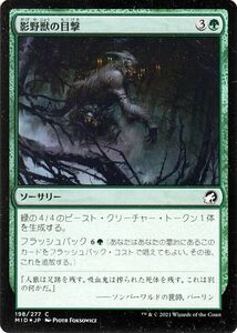 MTG 影野獣の目撃 フォイル マジック:ザ・ギャザリング イニストラード:真夜中の狩り MID-F198 | 日本語版 ソーサリー 緑