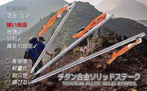 【強靭チタンペグ】 軽量ソリッドステーク 6本セット 30cm 硬い地面に対応 テント用 タープ用 アウトドア キャンプ 旅行 レジャー