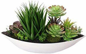 サボテン MedianField 【 サボテン ポット 観葉植物 30cm 】 多肉植物 寄せ植え 存在感抜群 フェイクグリーン
