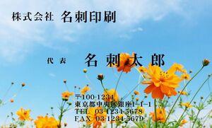 ★フルオーダー名刺作成 ロゴ・写真・QRコード無料 フルカラー1箱100枚900円 プラケース付 ★