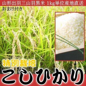 さんきん〓山形出羽三山羽黒米 特別栽培 こしひかり 100%1kg単位おまけ付