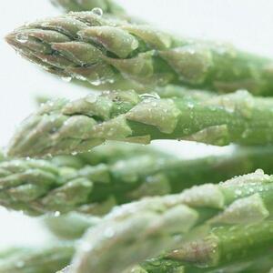 さんきん〓日常の一般野菜 アスパラ 1束