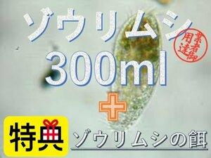 ゾウリムシ 300ml+エサ付き ★送料無料★メダカ 稚魚 針子 めだか 活餌 エサ ミジンコPSB光合成細菌と同梱可 エビ ビーシュリンプ
