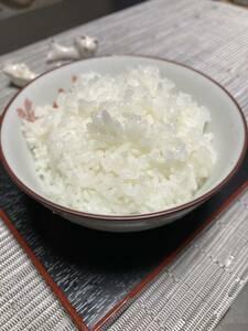 《冷めても美味しい!川下り米》1 ◇新米◇『玄米』令和3年産減農薬コシヒカリ10㎏ 5,000円 送料込