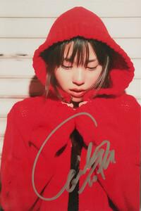 サインフォト 戸田恵梨香S430 秘蔵生写真 直筆サイン入り 入手困難