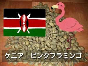 ケニアピンクフラミンゴ コーヒー生豆 800g