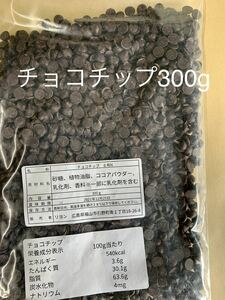 チョコチップ300g