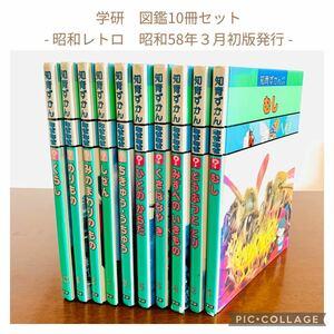 学研 知育ずかん なぜなぜ/図鑑 10冊セット/昭和レトロ