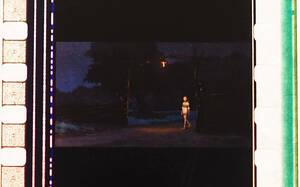 千と千尋の神隠し/三鷹の森ジブリ美術館/フィルムブックマーカー/しおり/宮崎駿/販売終了/ラミネート/マンマユート/限定グッズ/希少/セン41