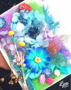 加工花材★ブルー好きな方へ★ハーバリウム プリザーブドフラワー 大地農園 カスミ