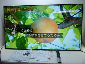 CV3081 LG 4K有機ELテレビ OLED55CXPJA 55型 2021年製 直接引取り限定