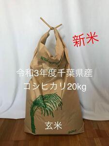 新米 お米 令和3年度千葉県産 コシヒカリ 20kg 玄米