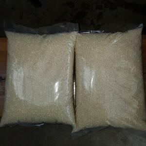 令和3年産白米うるち米5キロ2袋10キロ。