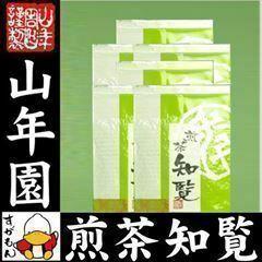 知覧茶 100g×6袋セット 鹿児島県川辺郡 送料無料 お茶 ギフト お土産 ギフト プレゼント 内祝い お返し