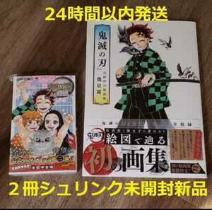 鬼滅の刃 画集 & 公式ファンブック第二弾鬼殺隊最終見聞録弐