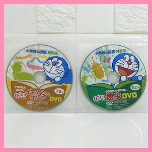 昆虫 イモムシとケムシ 小学館の図鑑 NEO DVDのみ