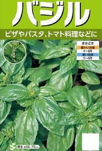 超おいしい!家庭菜園・園芸ガーデニング「バジルの種」一袋 栽培しやすい非売品