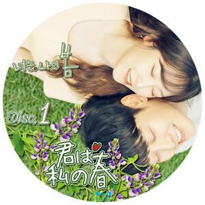 韓国ドラマ 「君は私の春」 Blu-ray版