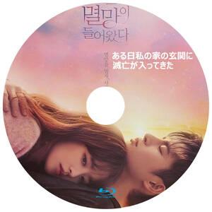 韓国ドラマ 「ある日私の家の玄関に滅亡が入ってきた」 Blu-ray版