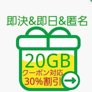 【即決&即日&匿名】約20GB mineo(マイネオ)パケットギフトコード 即日対応&匿名配送&送料無料 クーポン対応