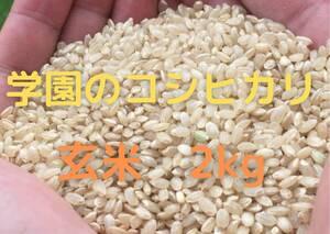 農業学校の学生と作ったコシヒカリ 玄米5kg 令和3年産新米