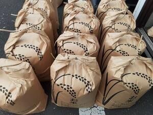 格安即決 玄米10kgを精米渡し(白米9kg) ブレンド米 うるち 白米 送料無料 数量限定 お米 5
