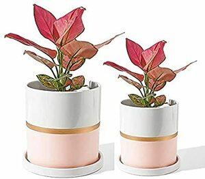 ホワイト 植木鉢 おしゃれ 多肉植物 鉢 観葉植物 鉢 オシャレ 陶器 鉢 多肉 鉢 室内サボテン鉢 北欧シンプルなスタイル プ