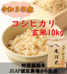 新米 令和3年産 氷河米 コシヒカリ 玄米10kg 山形県 庄内産 送料無料!