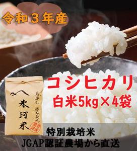 新米 令和3年産 氷河米 コシヒカリ 白米20kg 山形県 庄内産 送料無料!