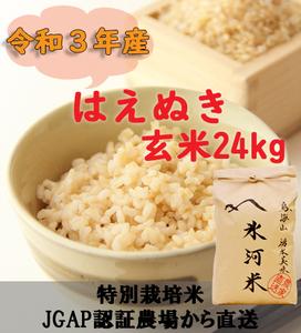 新米 令和3年産 氷河米 はえぬき 玄米24kg 山形県 庄内産 送料無料!