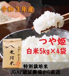 新米 令和3年産 氷河米 つや姫 白米20kg 山形県 庄内産 送料無料!
