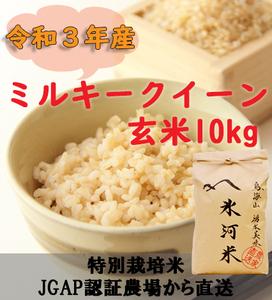 新米 令和3年産 氷河米 ミルキークイーン 玄米10kg 山形県 庄内産 送料無料!