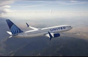 ユナイテッド航空 ANA 航空券 800マイル以上