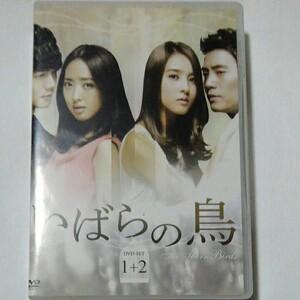 韓国ドラマ いばらの鳥 Ⅰ+Ⅱ DVD全話10巻 チュ・サンウク