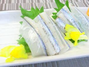 新鮮で鮮度抜群のサヨリフィーレ お刺身用 冷凍 生食用 1P 500g クセや臭みなどなく食べやすいです