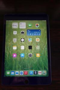 〇● iPad mini 第5世代 256GB Wifi スペースグレー 中古美品 ●〇