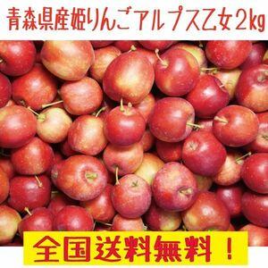 青森県産 アルプス乙女 2㎏ りんご飴やハロウィンにも  全国送料無料!(1)
