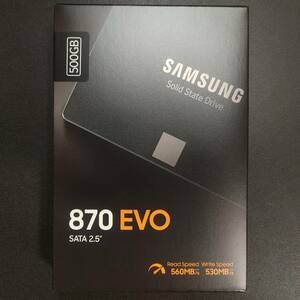 [SSD 500GB] Samsung 870 EVO MZ-77E500B/IT